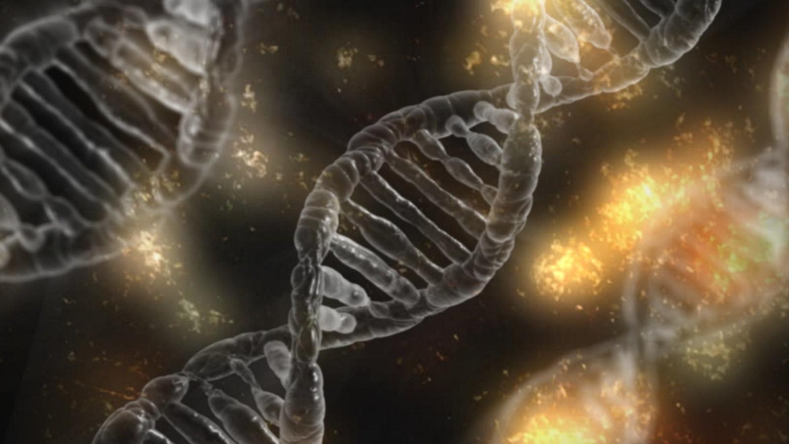 T2T-CHM13, cea mai completă secvență a genomului uman?
